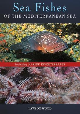 Sea Fishes Of The Mediterranean Including Marine Invertebrates - Lawson Wood