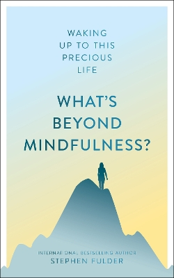 What's Beyond Mindfulness? - Stephen Fulder