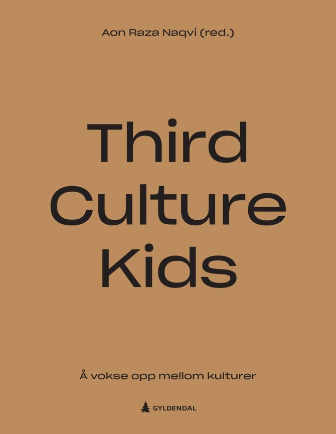 Third culture kids - Aon Raza Naqvi