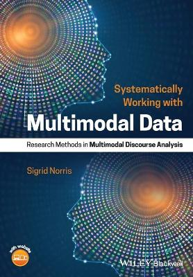 Systematically Working with Multimodal Data - Sigrid Norris