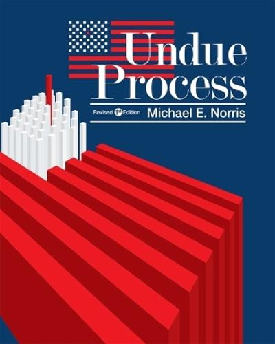 Undue Process - Michael E. Norris