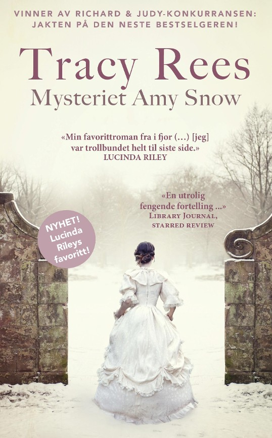 Mysteriet Amy Snow PDF ePub