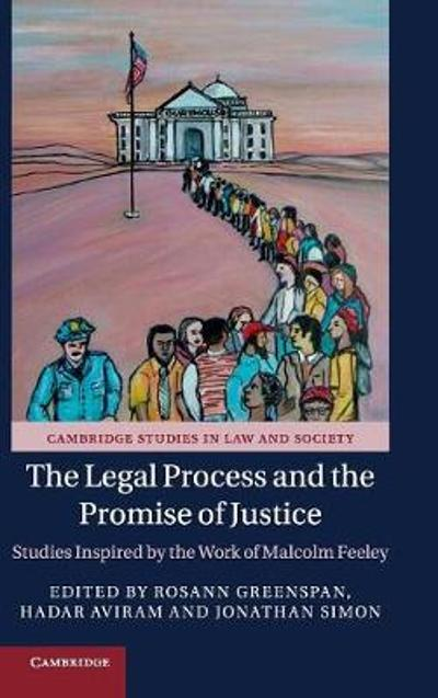 The Legal Process and the Promise of Justice - Rosann Greenspan