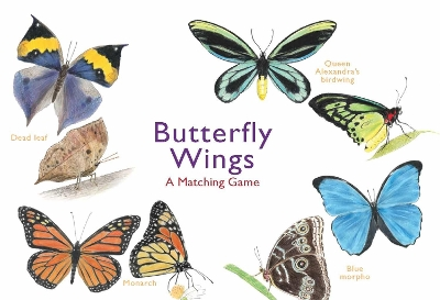 Butterfly Wings:A Matching Game - Christine Berrie