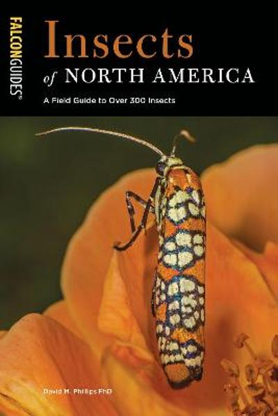 Insects of North America - David M., PhD Phillips