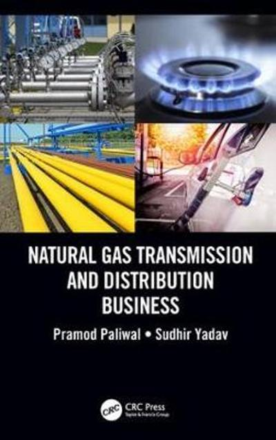 Natural Gas Transmission and Distribution Business - Pramod Paliwal