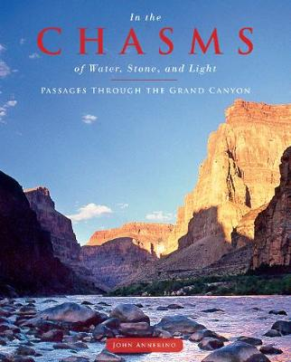 In the Chasms of Water, Stone, and Light - John Annerino