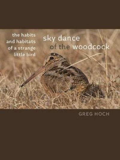 Sky Dance of the Woodcock - Greg Hoch