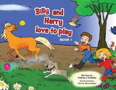 Billy and Harry love to play - Andrew Crossley