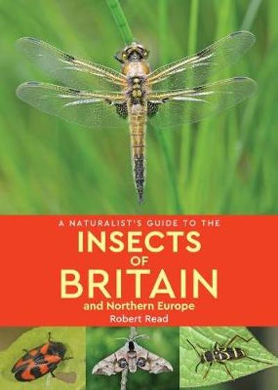 A Naturalist's Guide to the Insects of Britain and Northern Europe (2nd edition) - Robert Read