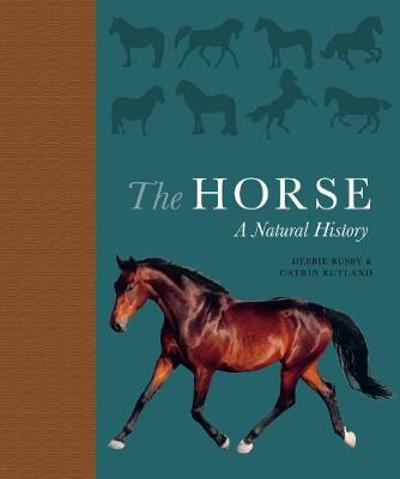 The Horse - Debbie Busby