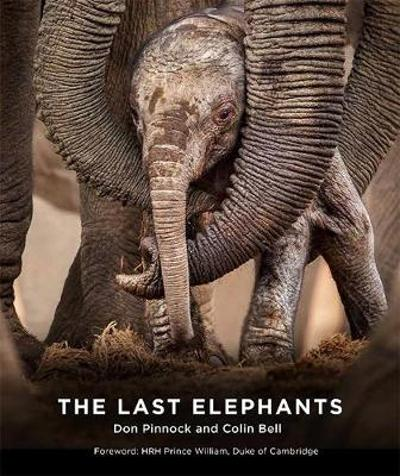 The Last Elephants - Colin Bell