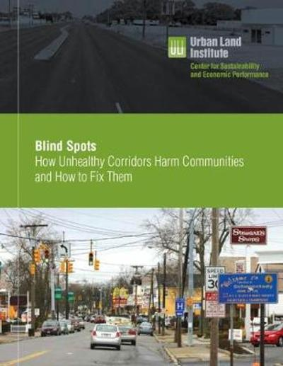 Blind Spots - Heather Zaccaro