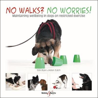 No walks? No worries! - Sian Ryan