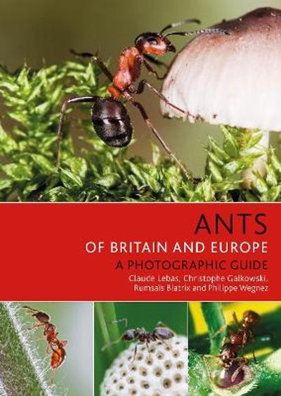 Ants of Britain and Europe - Claude Lebas
