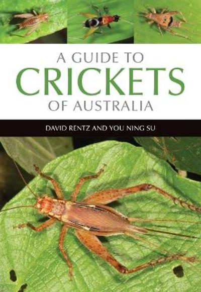 A Guide to Crickets of Australia - David Rentz