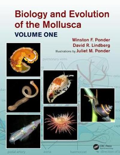 Biology and Evolution of the Mollusca, Volume 1 - Winston Frank Ponder