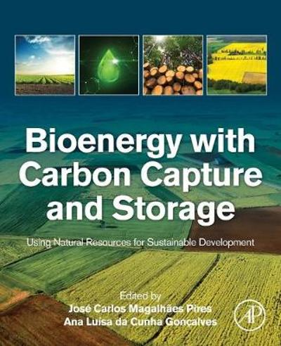 Bioenergy with Carbon Capture and Storage - Jose Carlos Magalhaes Pires
