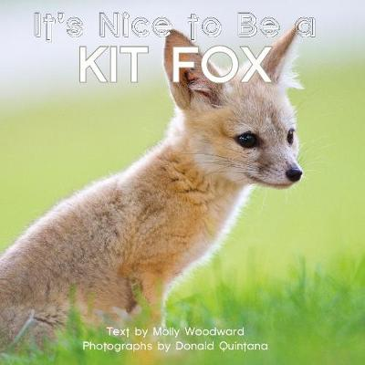 It's Nice to Be a Kit Fox - Molly Woodward