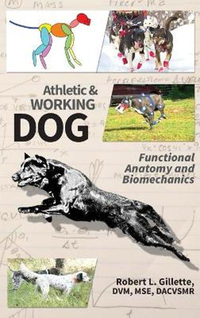 Athletic and Working Dog - Robert L Gillette