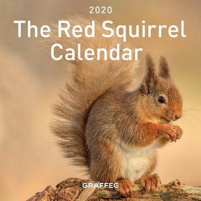 The Red Squirrel Calendar - Jane Russ