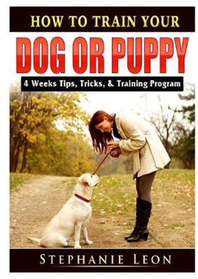 How to Train Your Dog or Puppy - Stephanie Leon