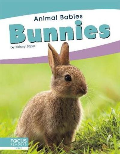 Animal Babies: Bunnies - ,Kelsey Jopp