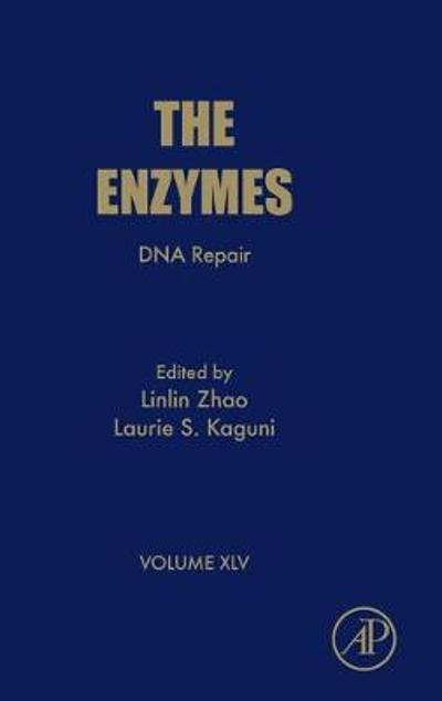 DNA Repair - Linlin Zhao
