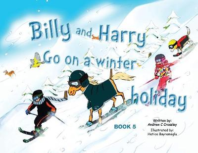 Billy and Harry go on a Winter Holiday - Andrew Crossley