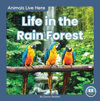 Animals Live Here: Life in the Rain Forest - ,Connor Stratton