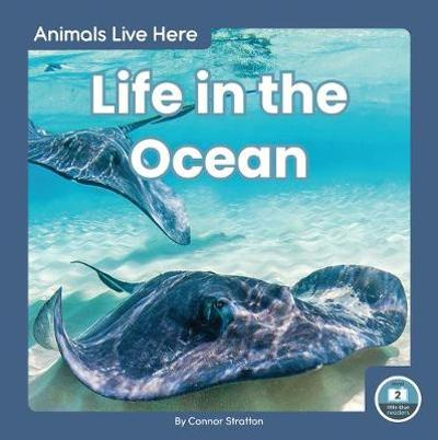 Animals Live Here: Life in the Ocean - Connor Stratton