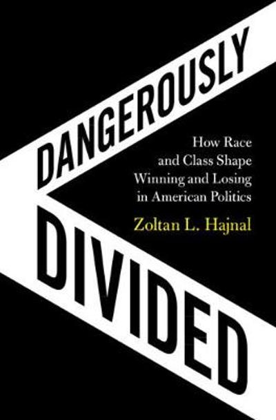 Dangerously Divided - Zoltan L. Hajnal