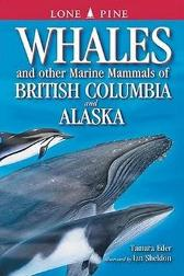 Whales and Other Marine Mammals of British Columbia and Alaska - Tamara Eder Ian Sheldon Gary Ross