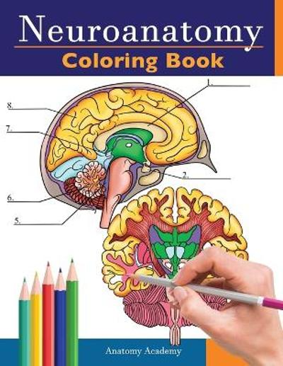 Neuroanatomy Coloring Book - Anatomy Academy