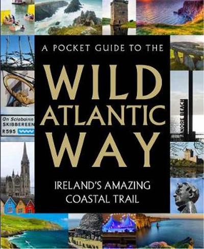 A Pocket Guide to the Wild Atlantic Way - Tony Potter