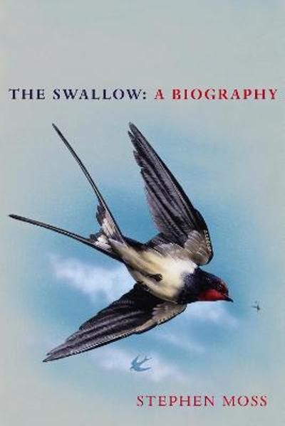 The Swallow - Stephen Moss