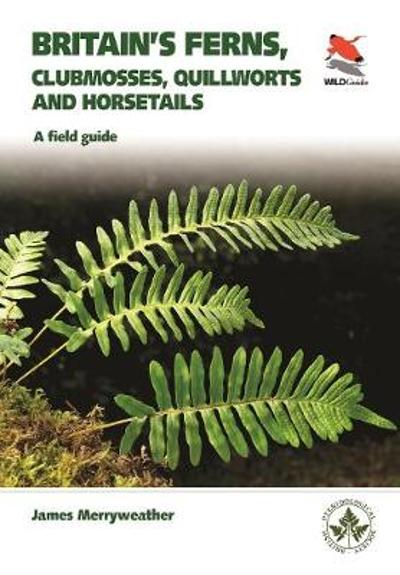 Britain's Ferns - James Merryweather