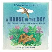 A House in the Sky - Steve Jenkins