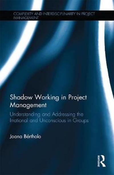 Shadow Working in Project Management - Joana Bertholo