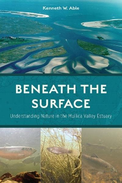 Beneath the Surface - Kenneth W. Able