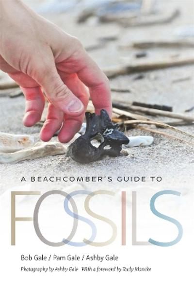 A Beachcomber's Guide to Fossils - Bob Gale
