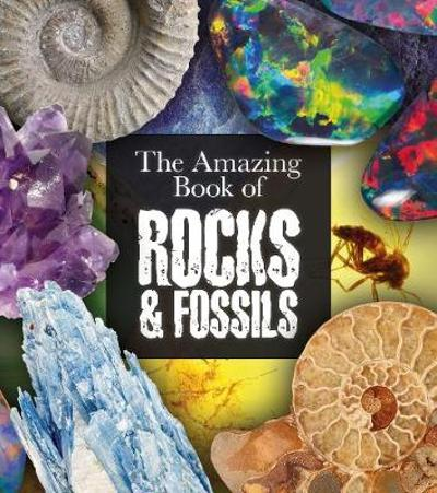 The Amazing Book of Rocks and Fossils - Claudia Martin