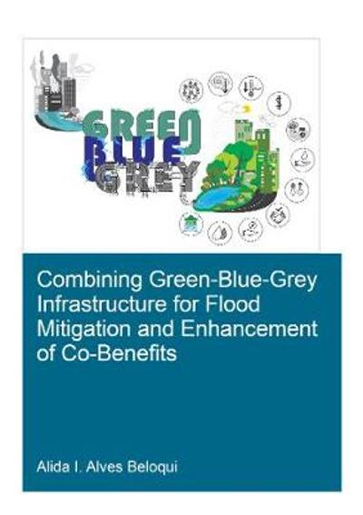 Combining Green-Blue-Grey Infrastructure for Flood Mitigation and Enhancement of Co-Benfits - Alida I Alves Beloqui