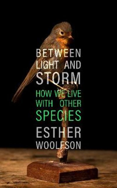 Between Light and Storm - Esther Woolfson