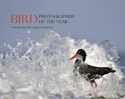 Bird Photographer of the Year - Bird Photographer of the Year