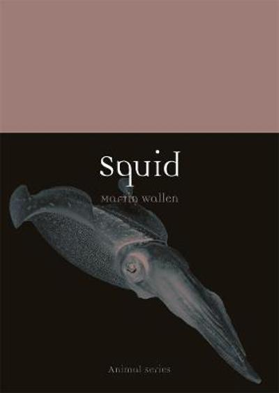 Squid - Martin Wallen