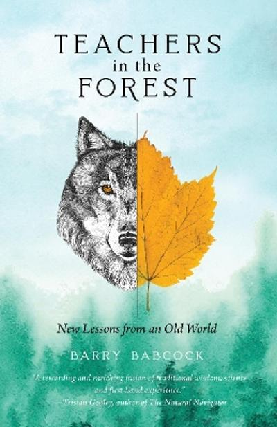Teachers in the Forest - Barry Babcock