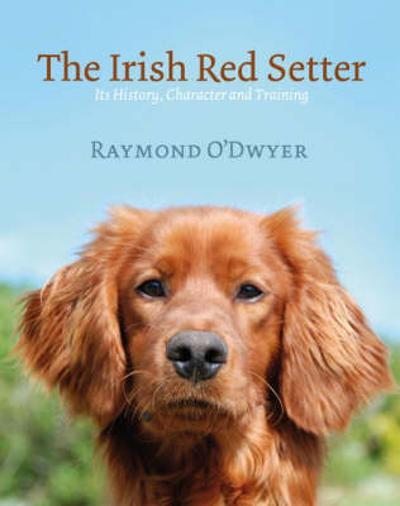 The Irish Red Setter - Ray O'Dwyer