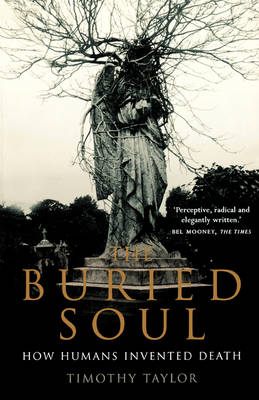 The Buried Soul - Timothy Taylor