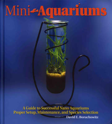 Mini-Aquariums - David E. Boruchowitz